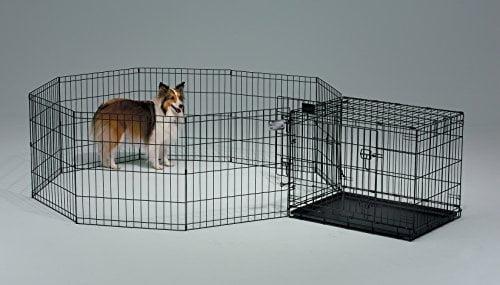 Köpek Eğitim Kafesi